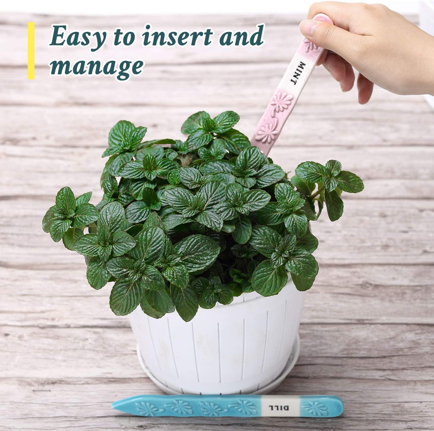 Perfect Gardening Gift Supplies for Indoor Outdoor Potted Plants and Rasied Bed 12 Set Ceramic Herb Garden Plant Labels Tags Markers