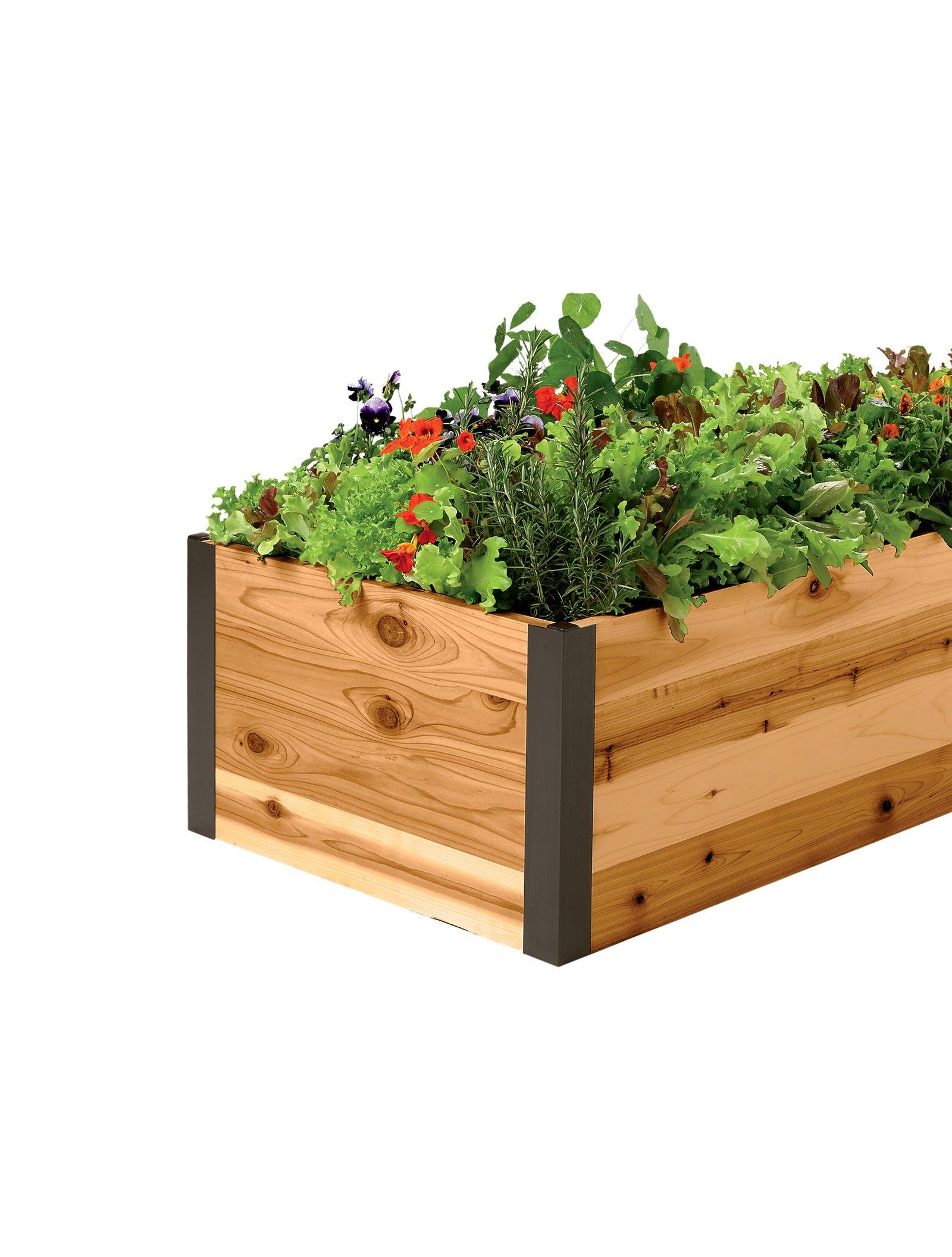 Cedar Raised Garden Bed 2' x 8' x 15'' by Gardener's Supply Company