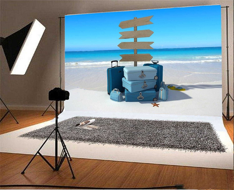 lfeeyビーチスタイル写真背景10 x 8ftヒトデLuggage案内標識SandアウトドアBackdrop Kid Baby Infant Boy Studio Propsビデオドレープ壁紙   B07BDLX66X