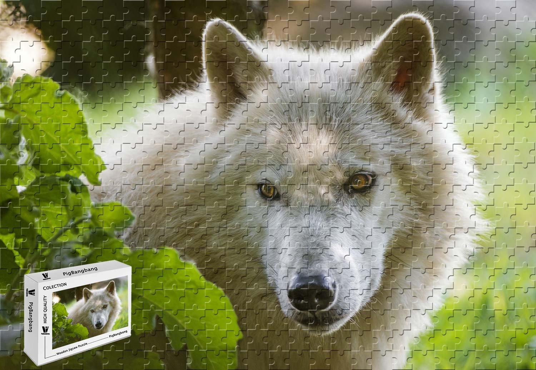 【楽天スーパーセール】 pigbangbang –、29.5 X 19.6インチ Face、ハンドメイドintellectivゲームプレミアム木製DIY接着のJigsaw Nice Painting Painting – Arctic Wolf Face Look Leaves – 1000ピースジグソーパズル B07FX43S84, 棚倉町:7d01113f --- a0267596.xsph.ru
