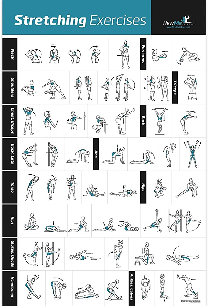 Estiramiento Póster Laminado – Muestra cómo para Estirar los músculos específicos para tu Entrenamiento – Gimnasio en casa Fitness guía