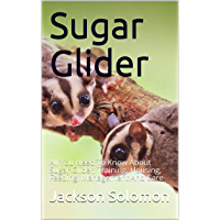 Sugar Glider: All You Need To Know About Sugar Glider, Training, Housing, Feeding, Management And Care