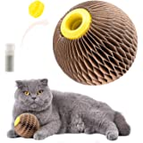 AREIIA Catnip Ball Toy for Cats Catnip Refillable Scratcher Ball Kitty's Faithful Playmate Reduce Obesity and Loneliness CSB0
