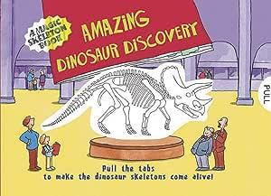 Libro de historia de dinosaurios mágicos de colores
