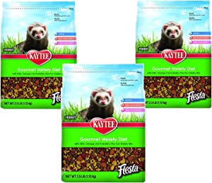 (3 Pack) Kaytee Fiesta for Ferrets, 2.5-Pound Bags