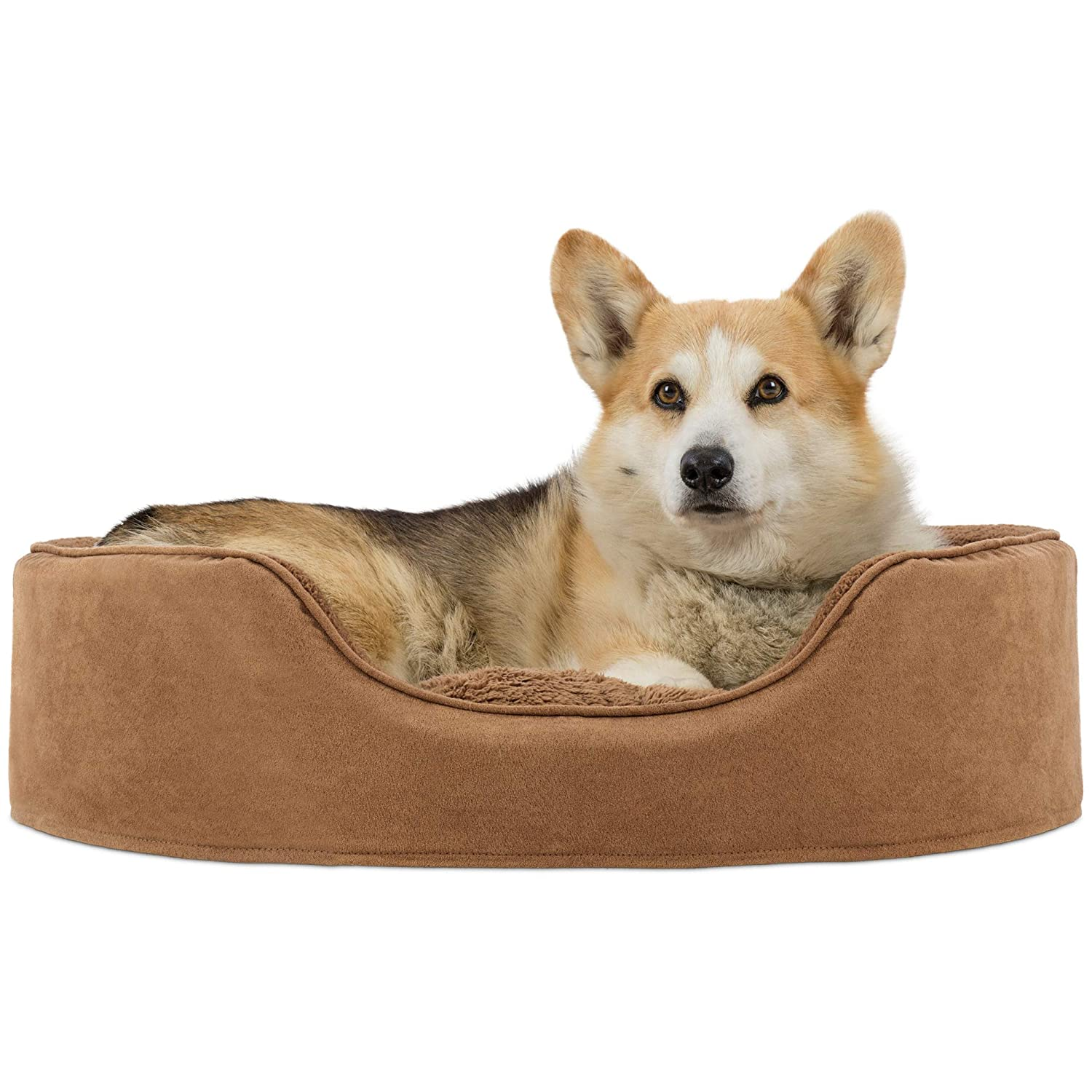 Camel Large Camel Large Furhaven Pet Products Nap Oval Terry Fleece and Suede Bed for Dog or Cat, Large, Camel