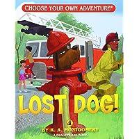 Lost Dog! (Choose Your Own Adventure - Dragonlarks)