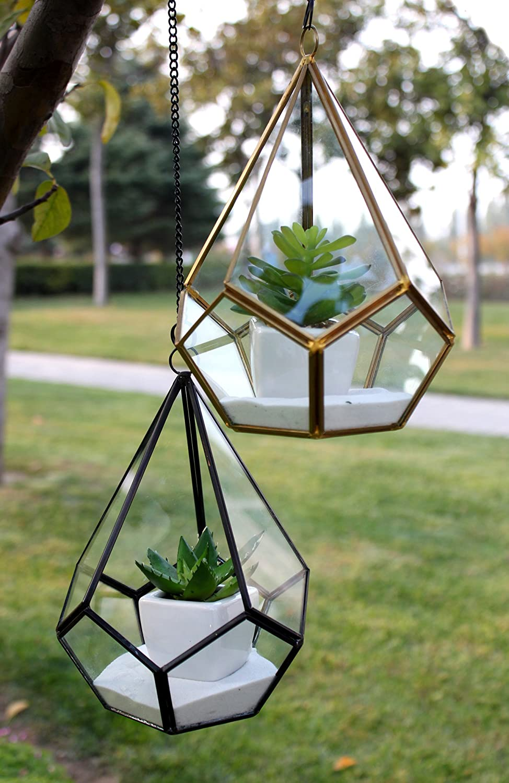 WGV Träne dreieckig Geometrisch Glas pannel Terrarium. 8get0108