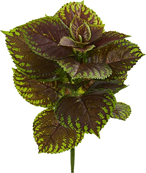 Nearly Natural 16 Coleus Bush Artificial Real Touch Set Of 8 Silk Plants Green Furniture Decor Amazon Com