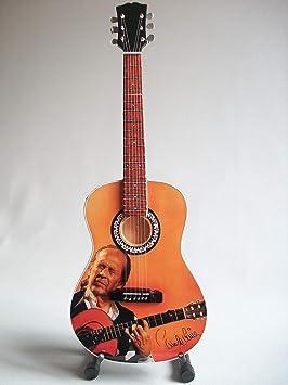 guitarra miniatura - Paco de Lucia: Amazon.es: Instrumentos musicales