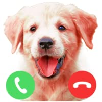 Fake Call From Golden Retriever Puppy Dog Prank