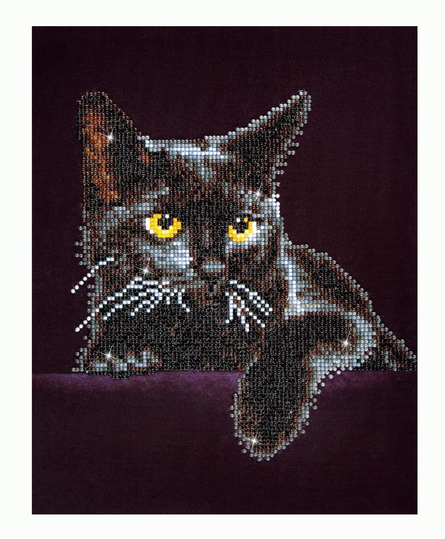 Diamond Dotz Kit Intermediate Midnight Cat by Diamond