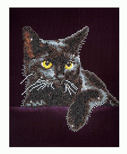 Diamond Dotz (DD5 001) - Midnight Cat ~ Diamond Embroidery Facet Art Craft  Kit ~ 11 x 14