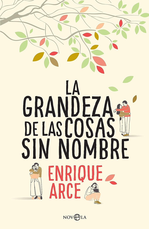 La grandeza de las cosas sin nombre (Ficción) eBook: Arce, Enrique ...