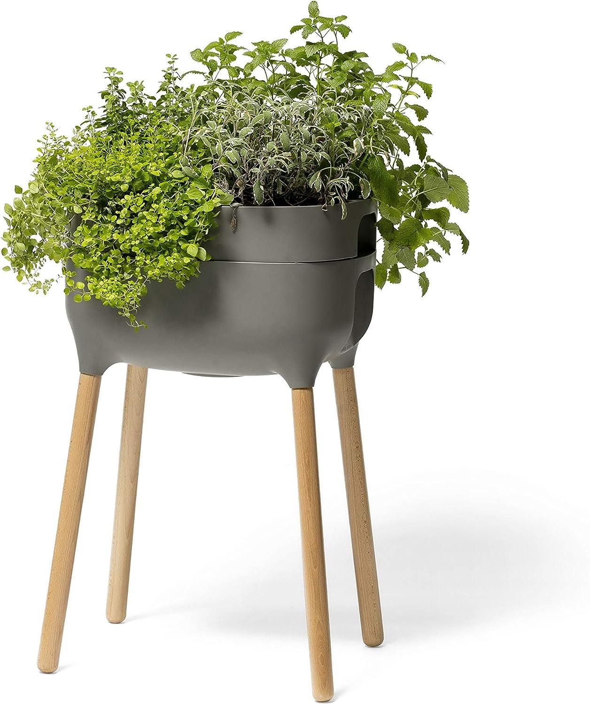 Alfresco Home 614-1716 Urbalive Raised FSC Hardwood Legs-Anthracite Finish Self Watering Planter, Grey