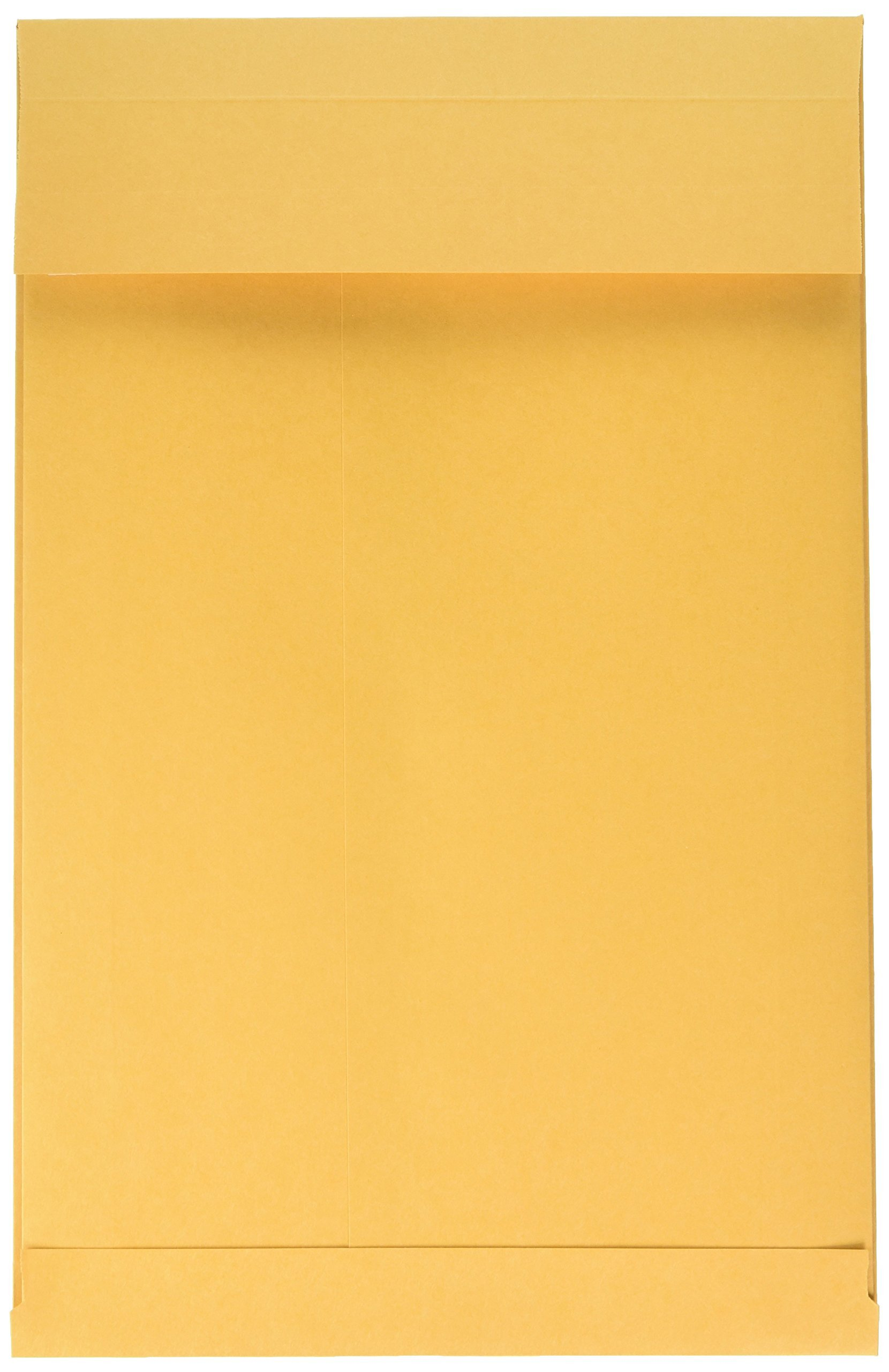 Quality Park Expansion Envelopes, Plain, 40 lbs, 9 x 12 x 2 Inches, 25 per Pack, Kraft (93334)