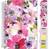 Amazon.com : Filigree Floral Ebony Midi - Paperblanks 2017 ...