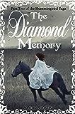 The Diamond Memory: Part Two of the Hummingbird Saga