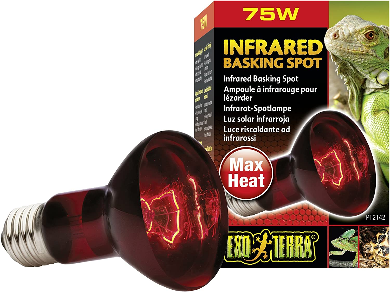 B0002AR3QC Exo Terra Heat-Glo Infrared Spot Lamp, 120-Volt 81MQMfCKMcL