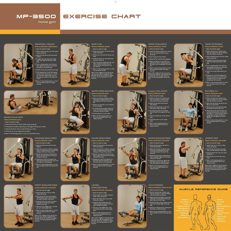 Marcy MP3500 Platinum equipo para ejercitarse en casa ...