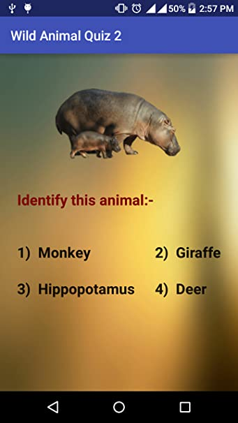 Amazon com: Wild Animals Quiz: Appstore for Android