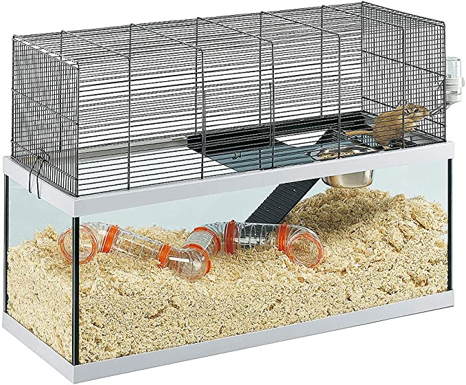 Feplast Ferplast Cage for Gerbils Rodents, Structure On Two Floors, Included Accessories Jaula de Vidrio para Jerbos Gabry 80, Estructura de Dos Pisos, Accesorios Incluidos, 79 x 30.5 x 51.4 Cm, Negro