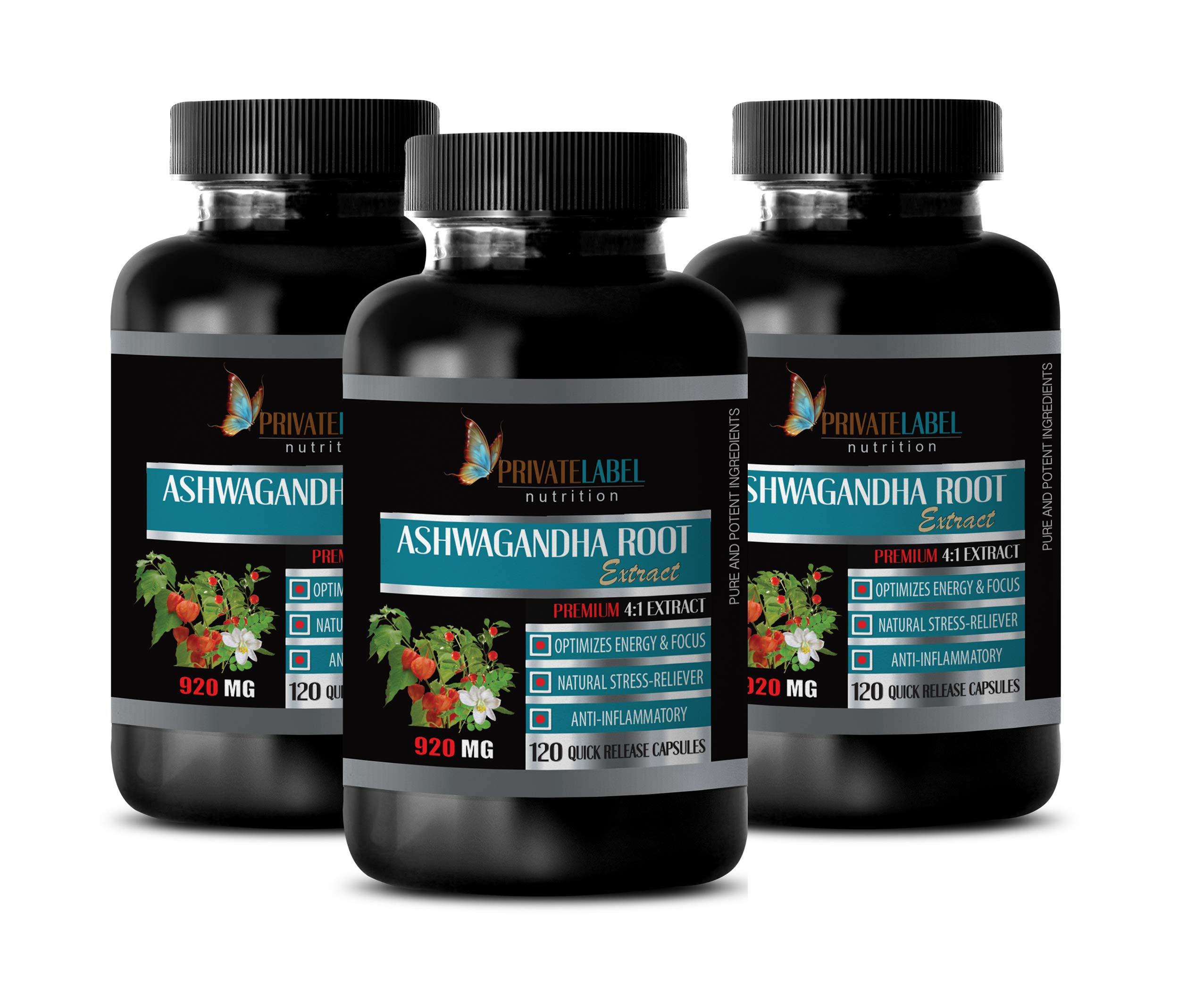 Brain Health Supplement - Memory Mind & Focus Enhancer - ASHWAGANDHA Root Premium 4:1 Extract - ashwagandha Capsules for Fertility - 3 Bottles 360 Capsules