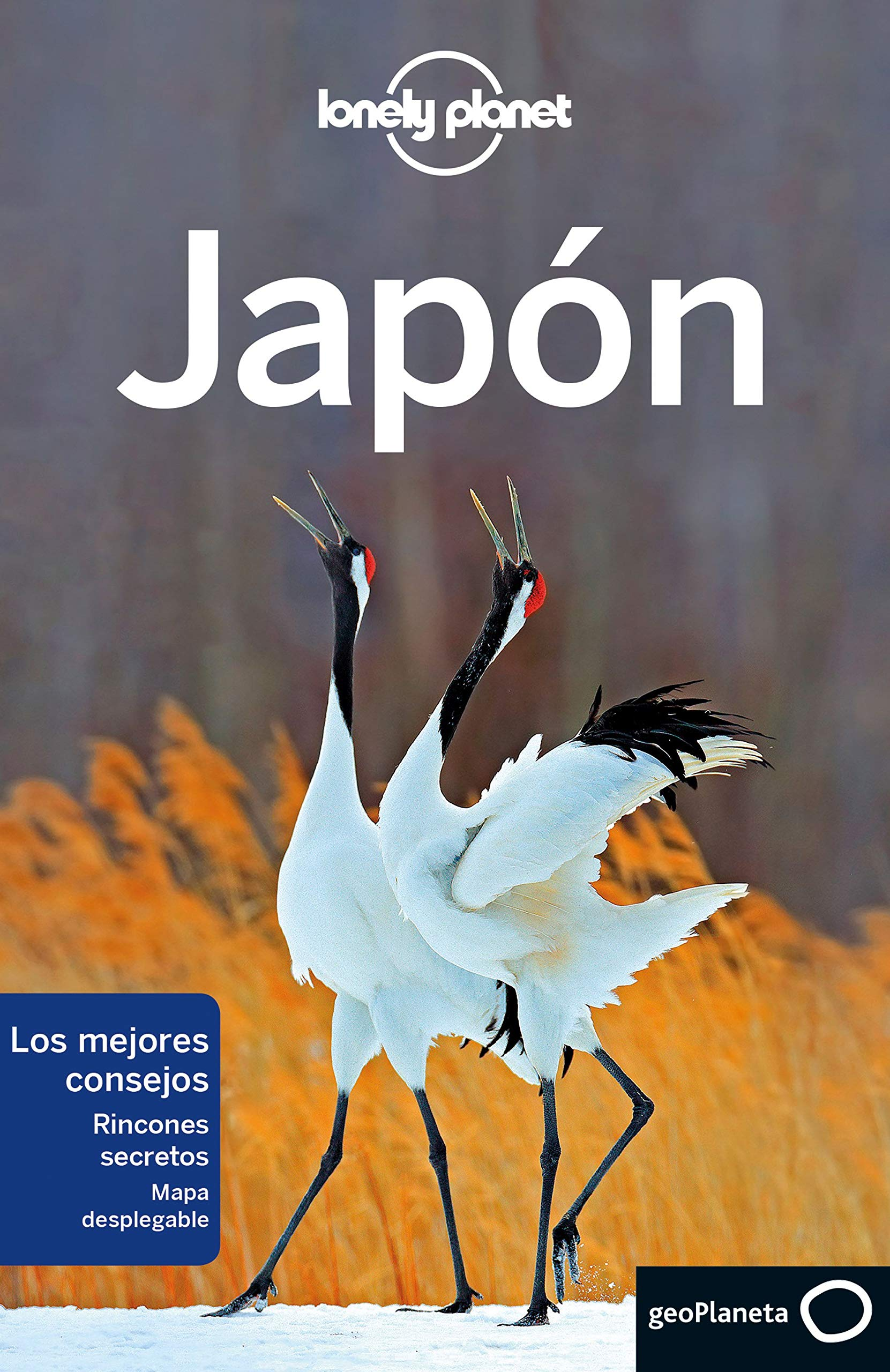 Japón 7 (Guías de País Lonely Planet): Amazon.es: Milner, Rebecca, Bartlett, Ray, Bender, Andrew, Forge, Samantha, Mclachlan, Craig, Morgan, Kate, OMalley, Thomas, Richmond, Simon, Tang, Phillip, Walker, Benedict, DArc Taylor, Stephanie, Gippini