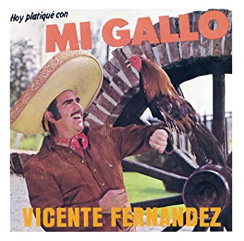 cancion de vicente fernandez hoy platique con mi gallo