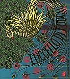 L'uccello di fuoco dal balletto di Igor Stravinskij. Ediz. illustrata