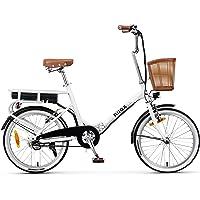 Nilox 30NXEB140V003V2 - Bicicleta eléctrica E Bike 36V 6AH 20X1.75P - J1, Motor 36 V 250 W, batería Recargable de Litio…