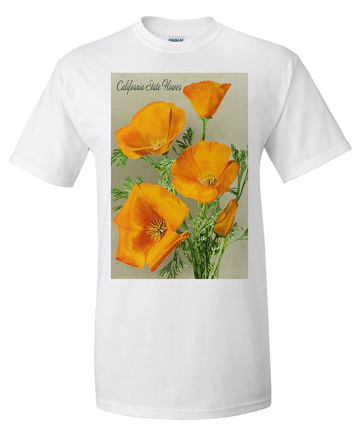 Amazon California State Flower Poppy Premium T Shirt Clothing