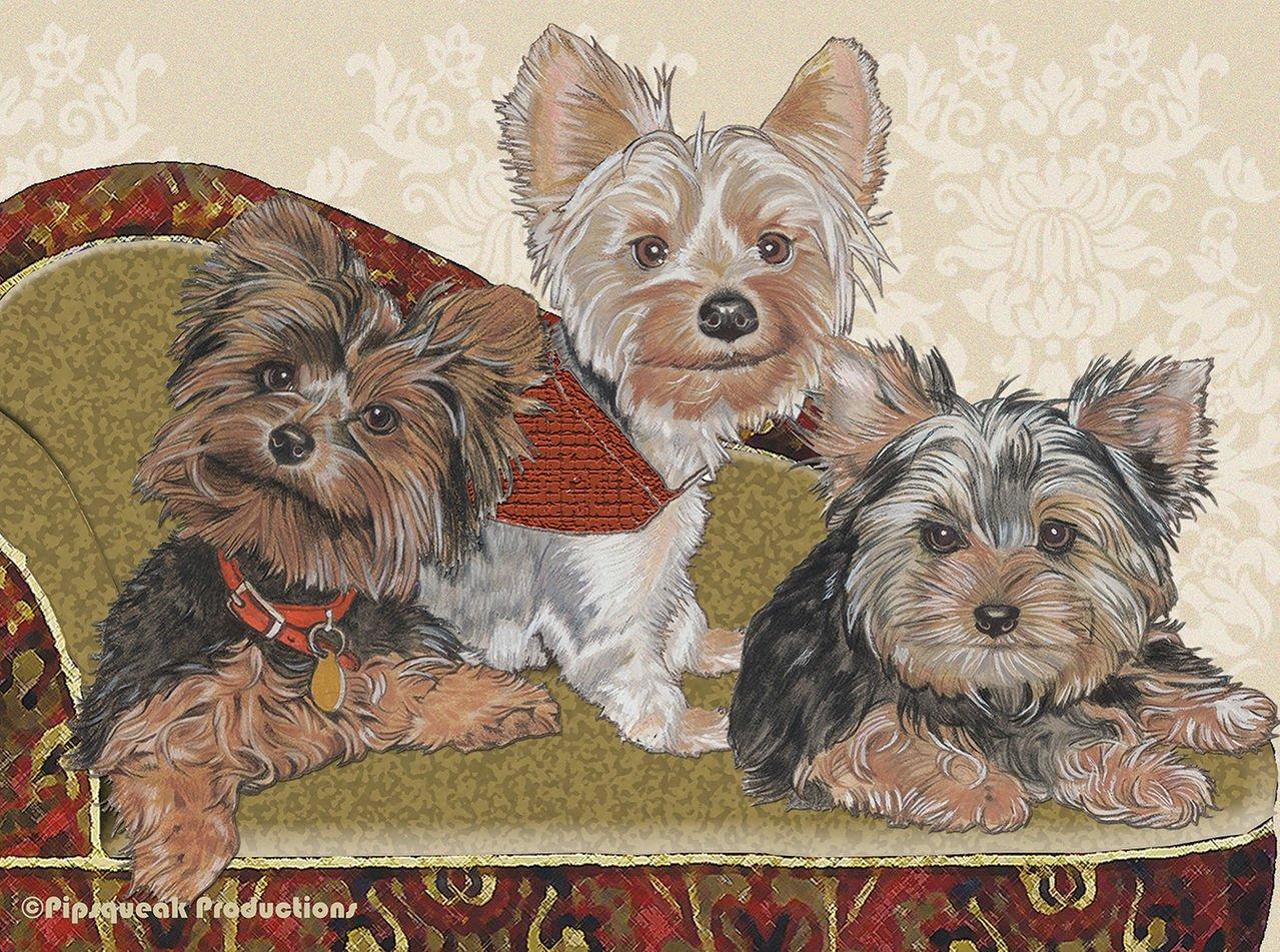 Best of Breed Yorkies Dog Breed Fleece Blanket