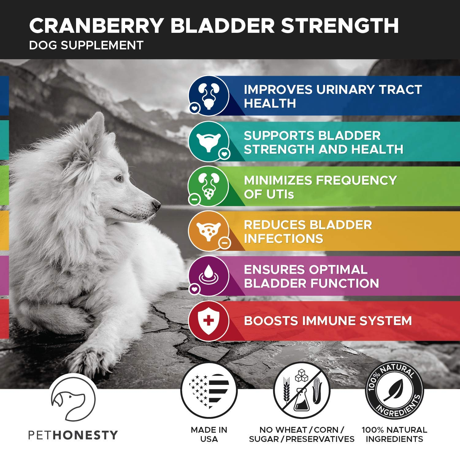 Cranberry for Dogs - Cranberry Pills for Dogs Bladder Support No More Dog Antibiotics - Dog UTI Treatment food - Bladder Infection Relief Urinary Tract Health UT Incontinence, Immune System D Mannose by PetHonesty (Image #2)