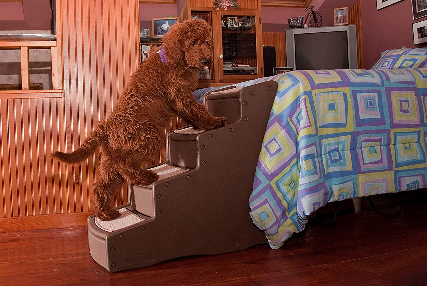 Pet Gear Easy Step IV Pet Stairs, 4-Step for Cats Dogs, Portable Lightweight, Sturdy