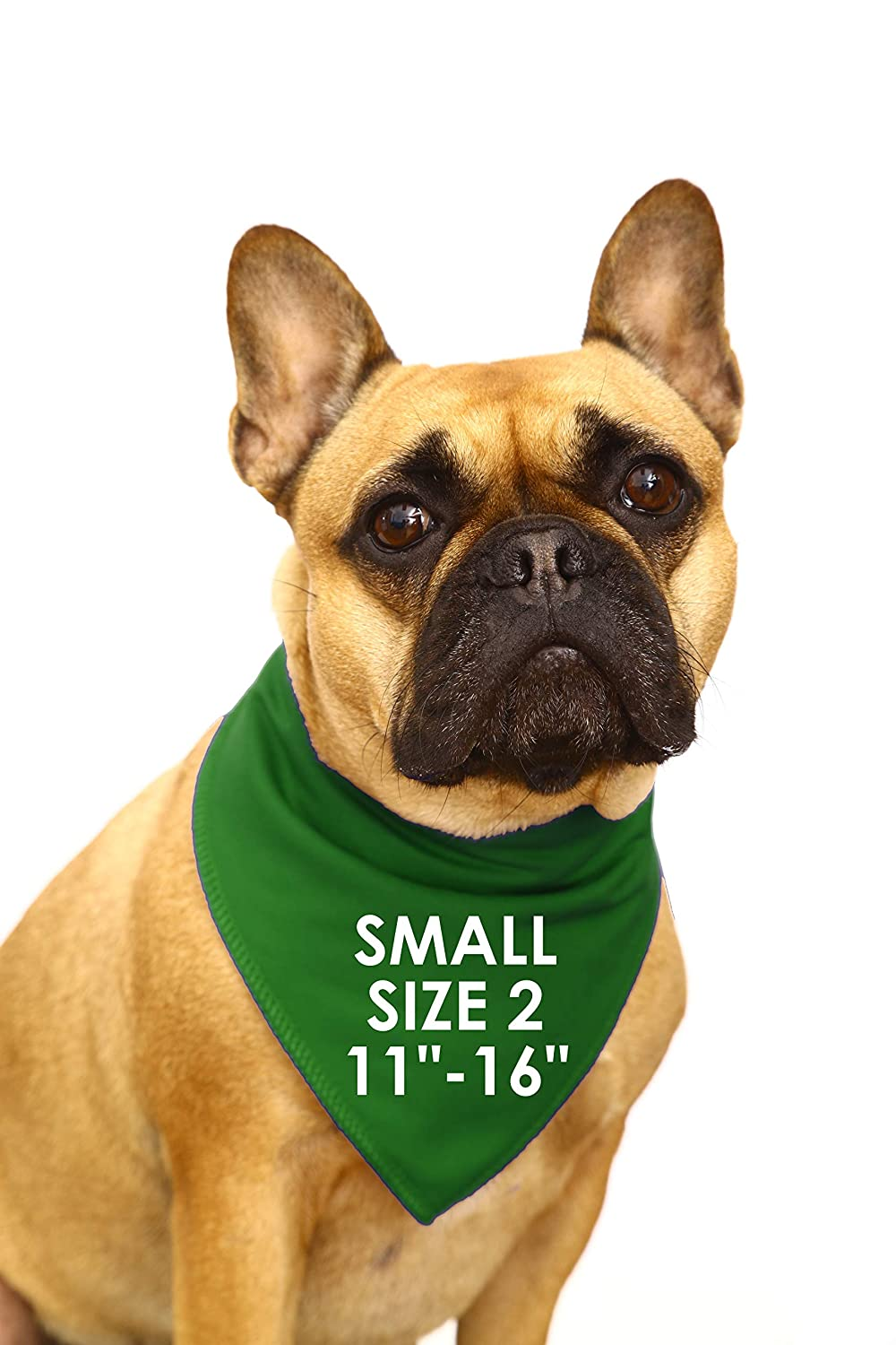 Spoilt Rotten Pets SIZE 2 Small//Medium Dog /– Fits 11-16 Neck S2 Designer Dog Bandana Harry Potter Style - Slytherin House Four Adjustable From A Tiny Chihuahua to An Extra Large St Bernard