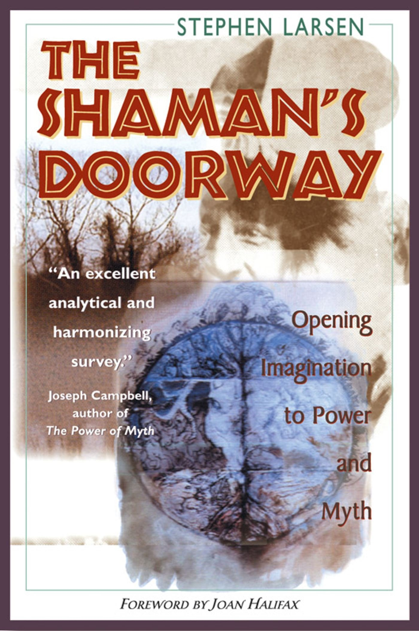 The Shaman's Doorway: Opening Imagination to Power and Myth: Stephen  Larsen, John Halifax: 9780892816729: Amazon.com: Books