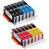 12 Pack Arthur Imaging Compatible Ink Cartridge Replacement for 251XL (3 Black, 3 Cyan, 3 Yellow, 3 Magenta, 12-Pack)