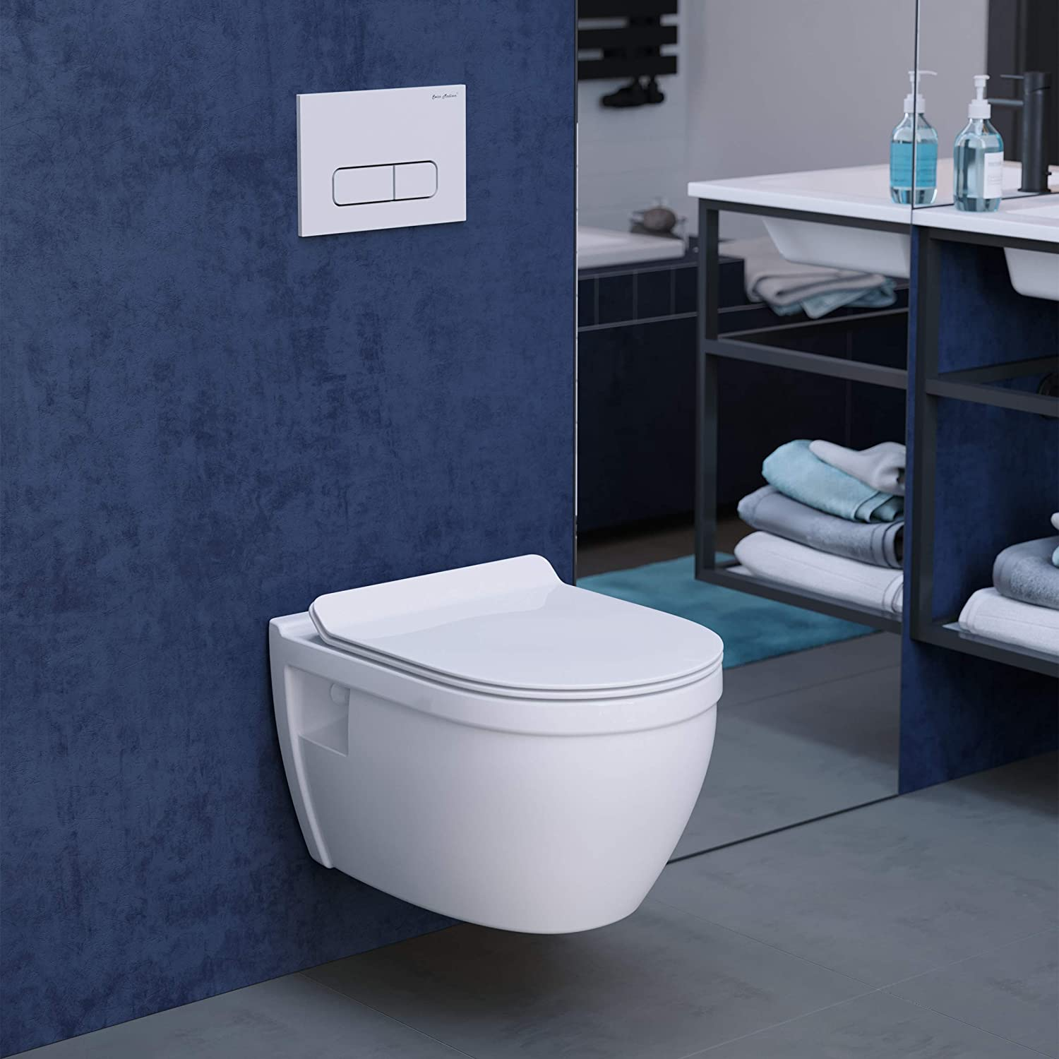 Wall Mounted toilet can make for a very beautiful bathroom