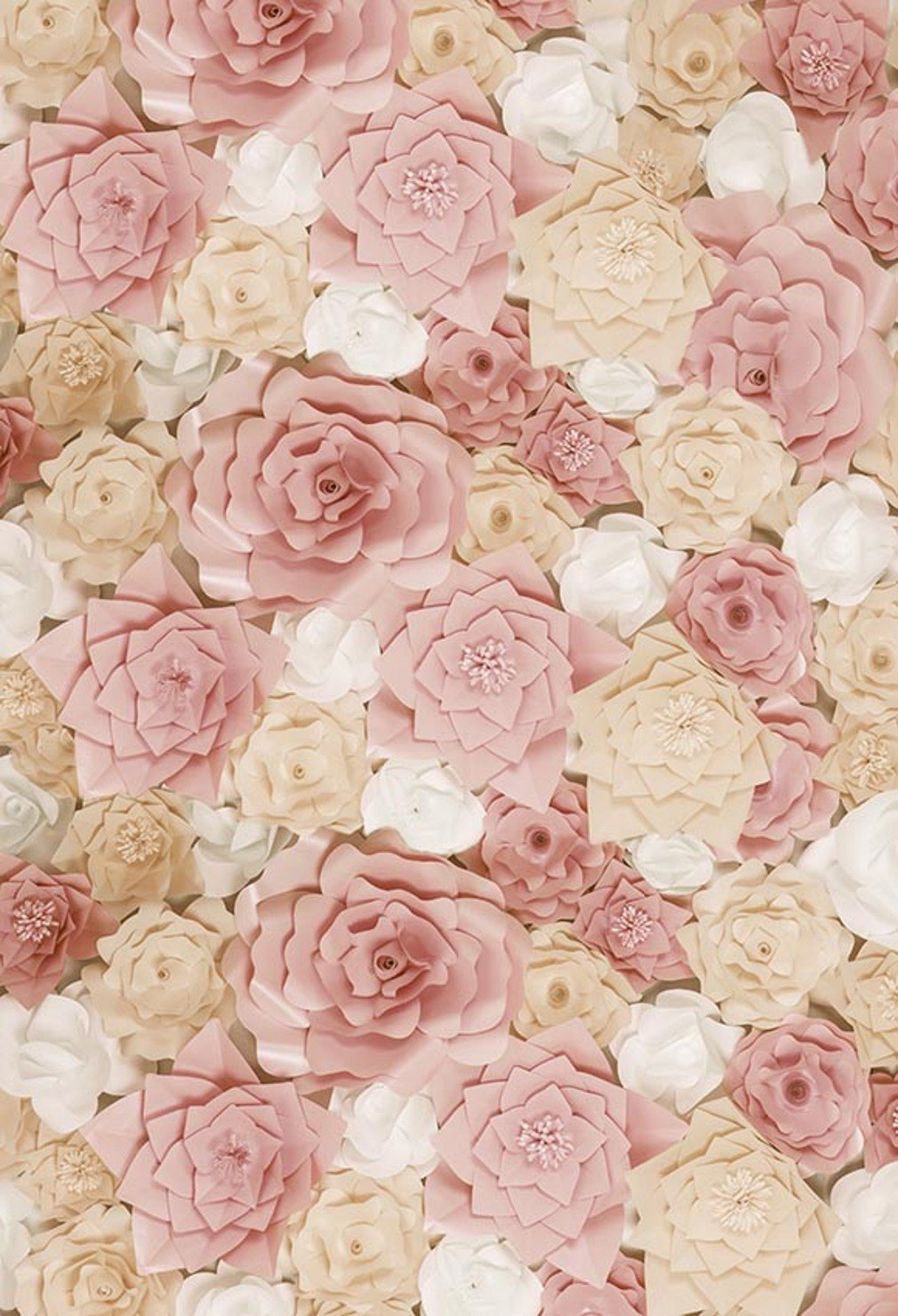 8 X 10 Ft 3d Floral Photographic Background Cream Blush Amazon Co