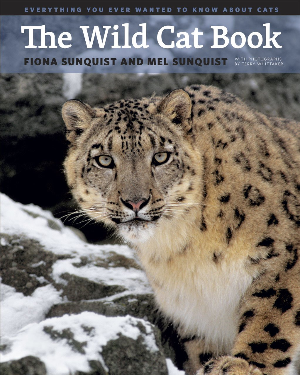 Everything You Ever Wanted to Know about Cats The Wild Cat Book
