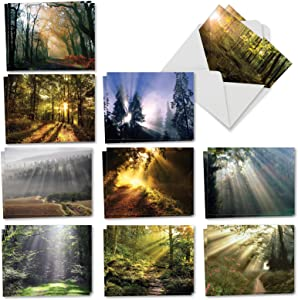 The Best Card Company - 20 Landscape Nature Note Cards Blank (4 x 5.12 Inch) (10 Designs, 2 Each) - Shining Through AM1735OCB-B2x10