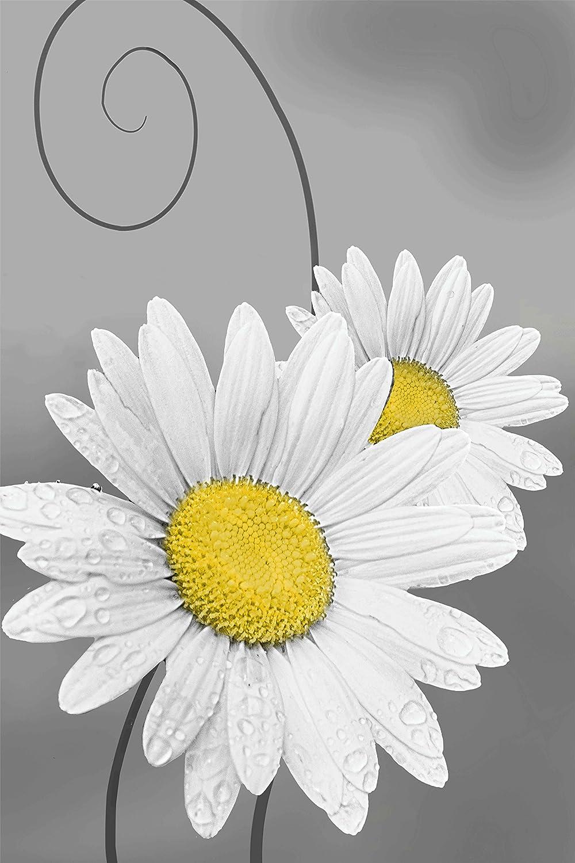 Amazon Daisy Right Yellow With Sepiagray Flower Home Decor