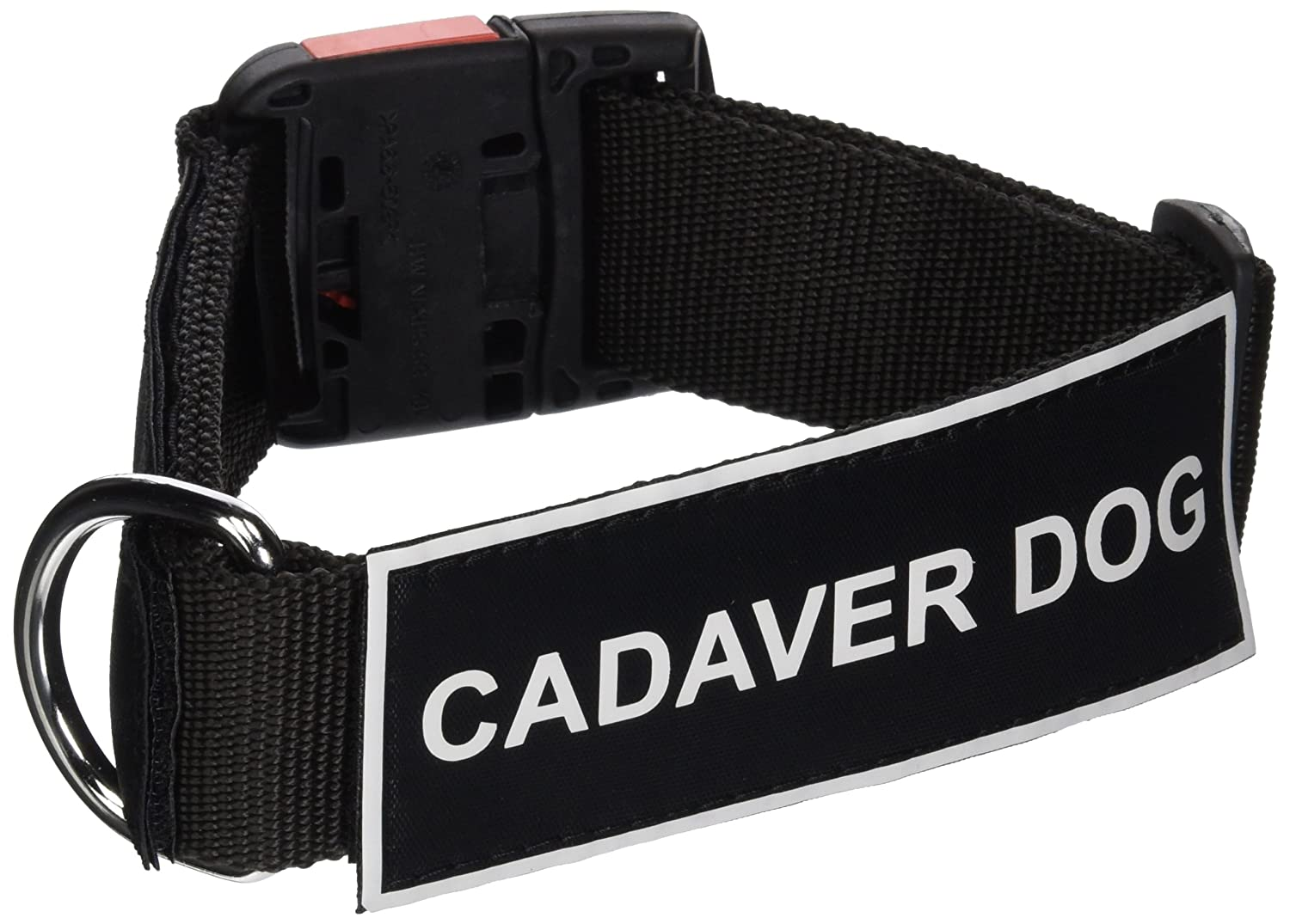 Dean & Tyler Nylon Patch Collar with Cadaver Dog Patches, Small, Fits Neck 18 to 21-Inch