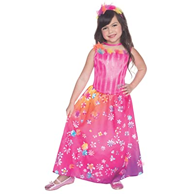 Rubies Barbie and the Secret Door Movie Alexa Costume, Child Small: Toys & Games