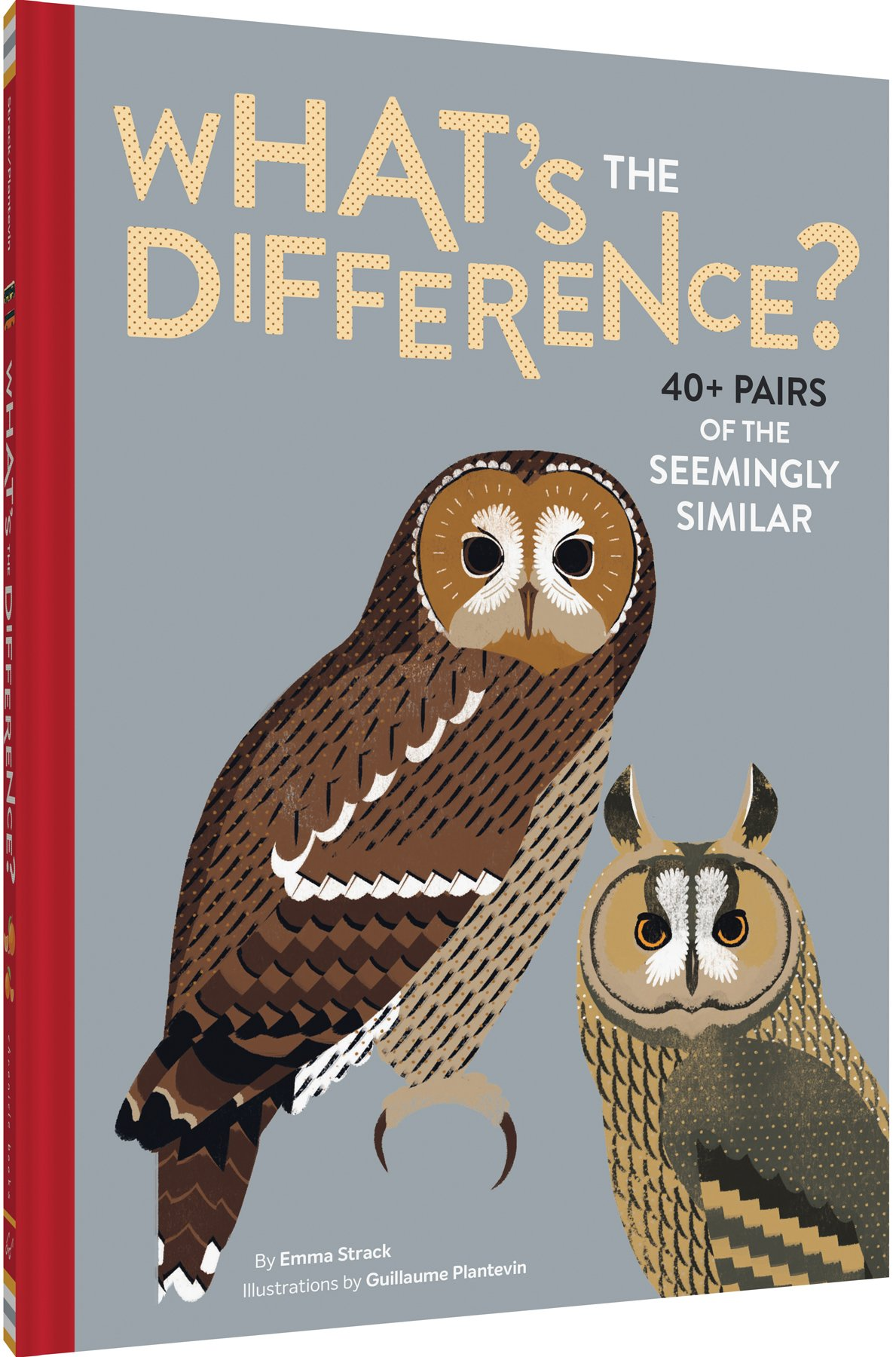 40 Whats the Difference? Pairs of the Seemingly Similar