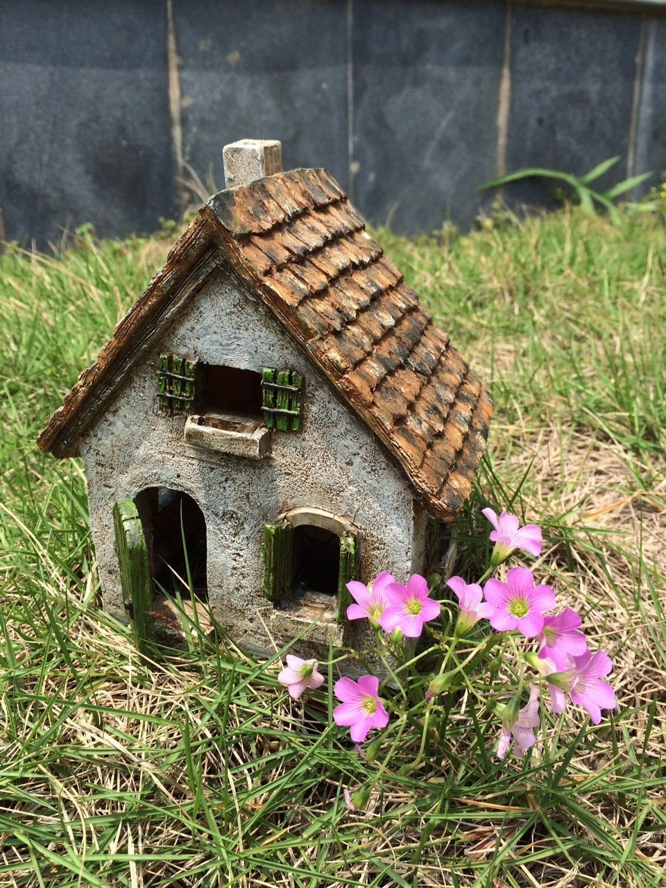 Fairy Garden House-Morning Glory Cottage with Swinging Door by WFG (Image #3)