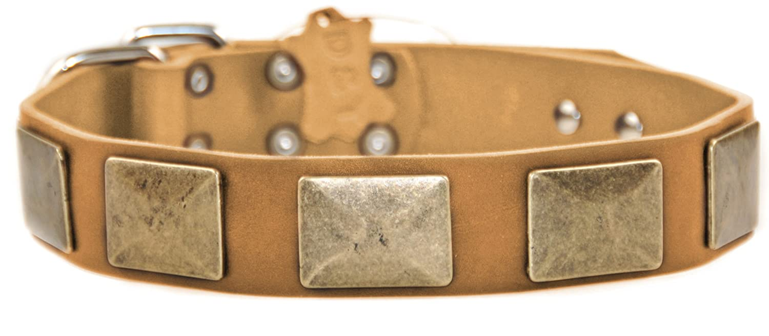 Dean and Tyler BRASS PLATE , Leather Dog Collar with Vintage Brass Plates Tan Size 38-Inch by 1-1 2-Inch Fits Neck 36-Inch to 40-Inch