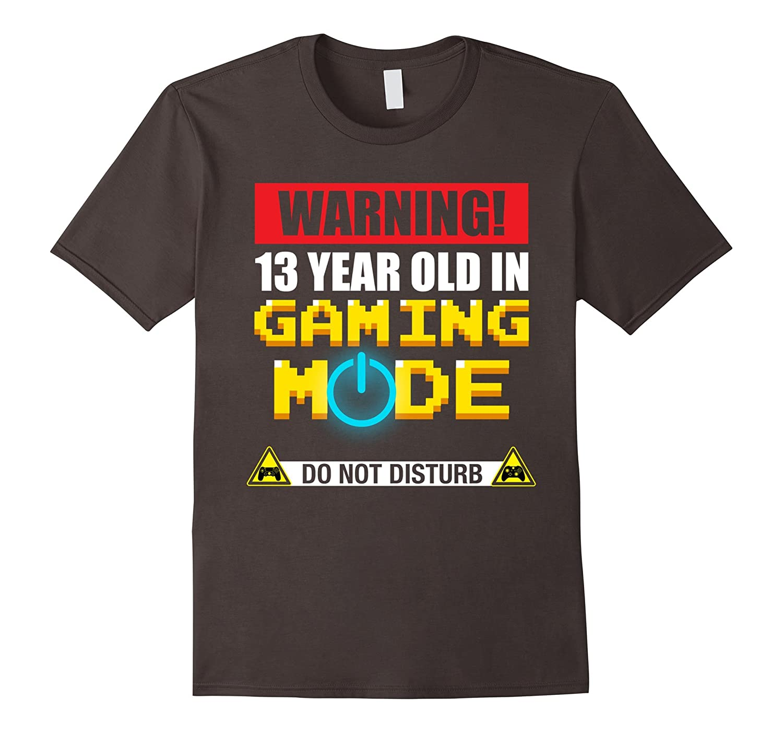 13th Birthday Gift 13 Year Old Gamer T Shirt TH