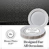 """10.25"""" DISPOSABLE DINNERWARE PLATES   Premium"""